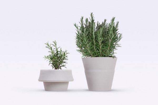 fold pot