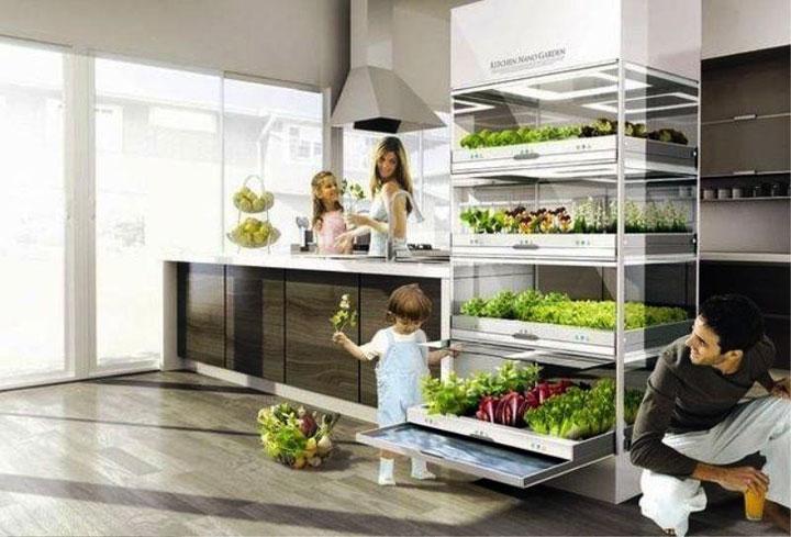 nano garden concept