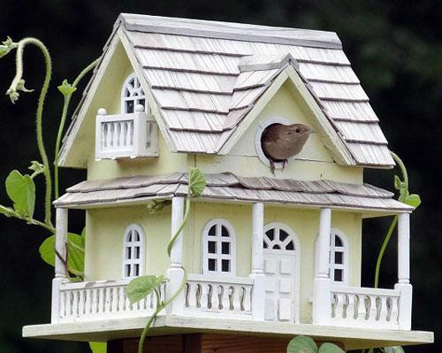 groot vogelhuisje