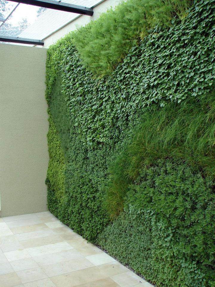 verticale tuin
