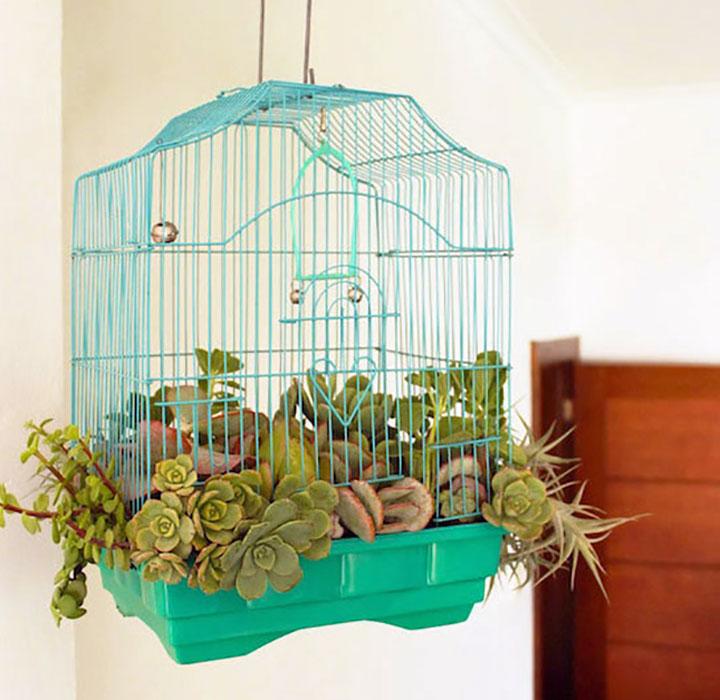 vogelkooi met planten